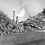 1938-hurricane-wood