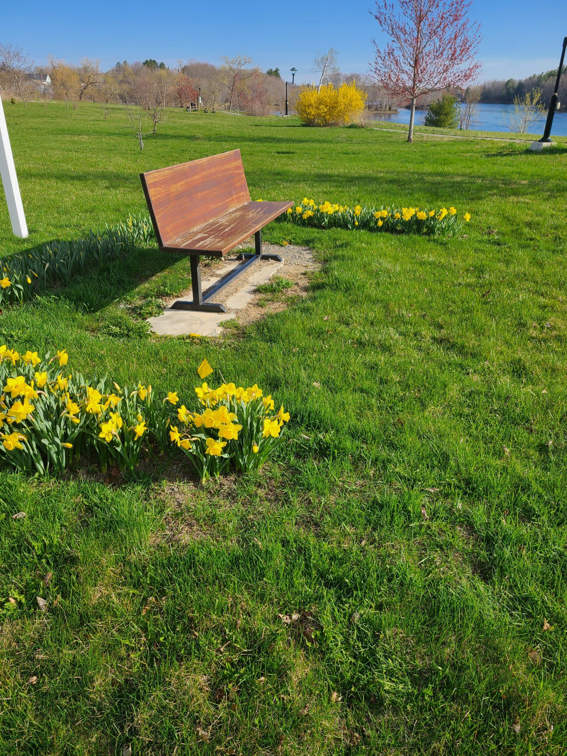 Chidren's Memorial Bench